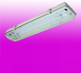 Tube Light Fitting